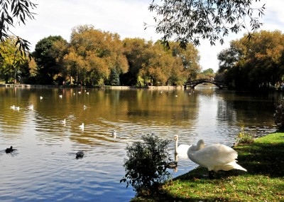 2014.0928 D9192 River Avon