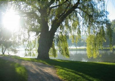 Avon River, Stratford, Ontario, 2004.